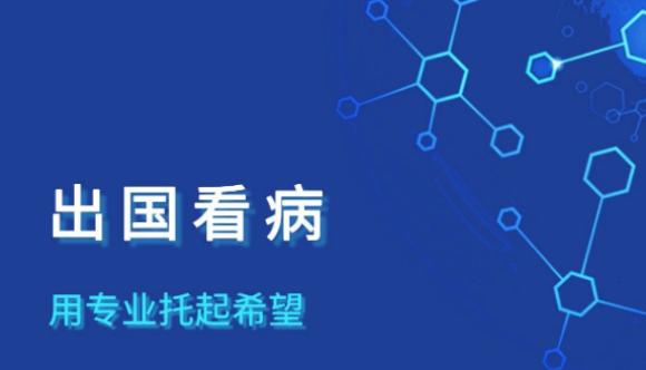 中国大健康产业峰会,出国看病专业机构盛诺一家也受邀出席